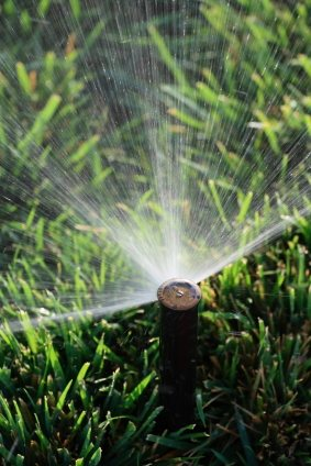 Lawn sprinkler service in Spring Hill FL by Sunshine Sod and Landscaping LLC.