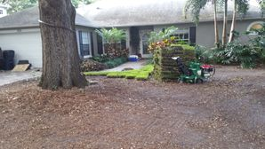 Before & After Sod Installed in Citrus Park, FL (1)