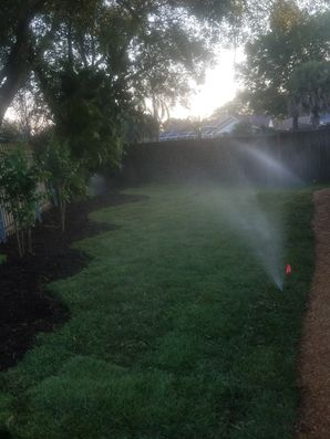 Beautiful New Lawn/Sod Installed in Riverview, FL (1)