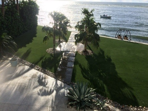 Beautiful New Lawn! Sod Installation in Tampa, FL (1)
